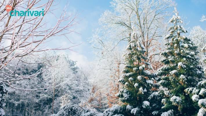 Was bedeutet dieses mysteriöse Zeichen in Nürnberg?